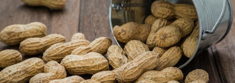 cacahuète et le diabete