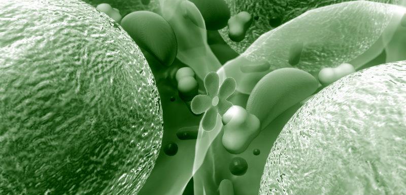 Diabète : la cause de l'inflammation chronique enfin identifiée