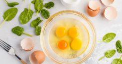Œufs et diabète font-ils bon ménage ?
