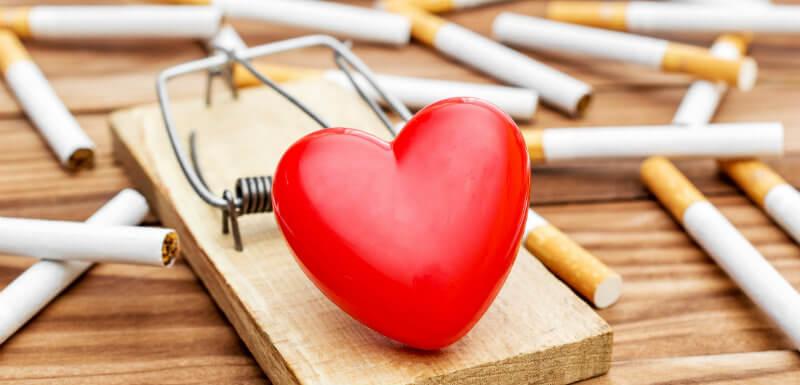 Le tabac, facteur de risque cardiovasculaire